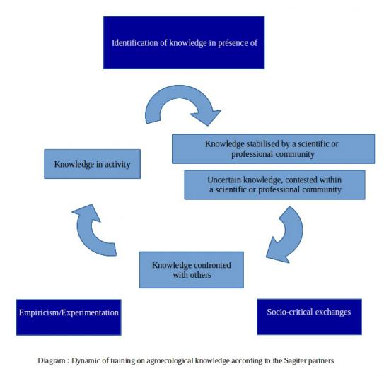 image Diagram_Training_AEK_Partners_Sagiter.jpg